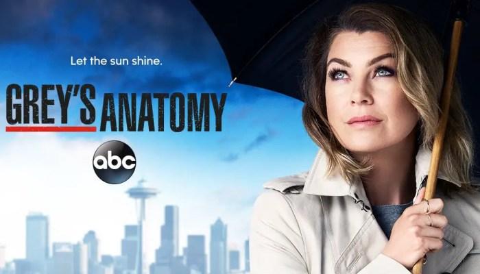 Grey's Anatomy Season 15 extended