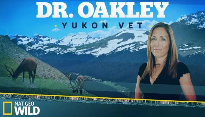 Dr. Oakley, Yukon Vet Season 5 Cancelled Or Renewed?