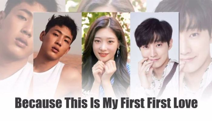 Netflix Announces New Series My First First Love