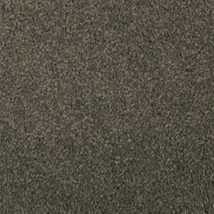 Mohawk Carpet Flooring - Pine Needle, Natural Splendor ll