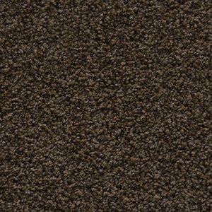 Carpet Flooring - Opus