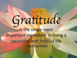 gratitude, living, successful, fufilled, life