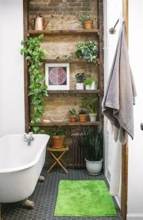 Lovely House Plants In The Bathroom02