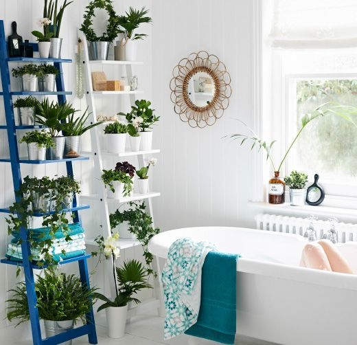 Lovely House Plants In The Bathroom16