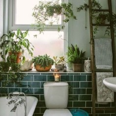 Lovely House Plants In The Bathroom21
