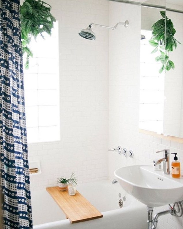 Lovely House Plants In The Bathroom25