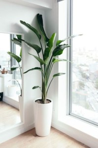 Plant Stand Design For Indoor Houseplant 05