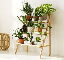 Plant Stand Design For Indoor Houseplant 24