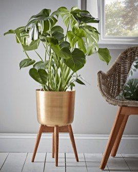 Plant Stand Design For Indoor Houseplant 34