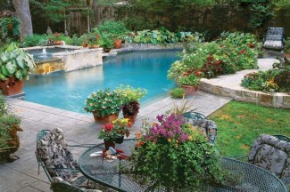Suitable Plants Grow Beside Swimming Pool 24