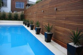 Suitable Plants Grow Beside Swimming Pool 33
