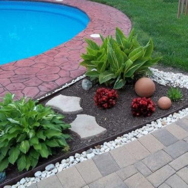 Suitable Plants Grow Beside Swimming Pool 41