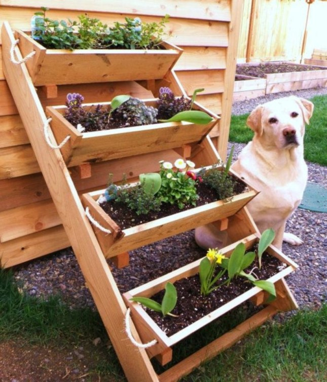 Vertical Vegetable Garden Ideas To Inspire You 15