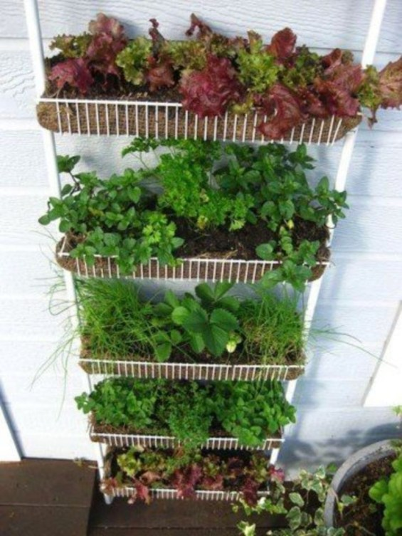 Vertical Vegetable Garden Ideas To Inspire You 17