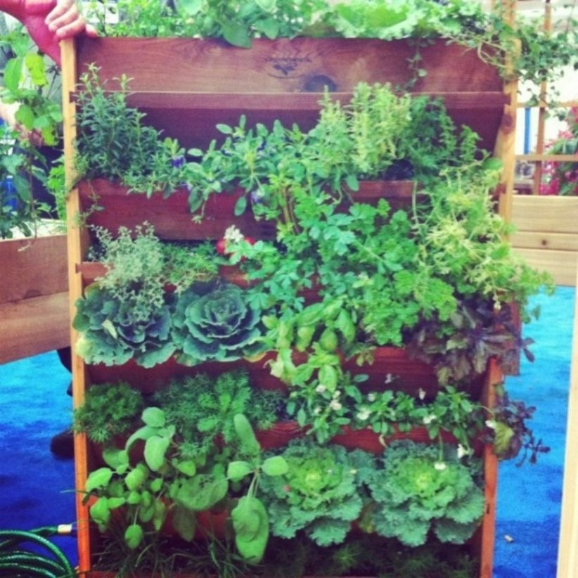 Vertical Vegetable Garden Ideas To Inspire You 33