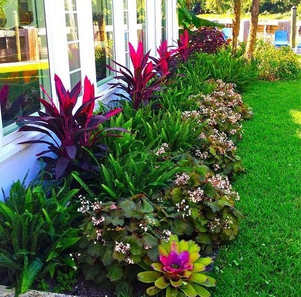 Tropical Plantation Ideas You Can Try In Your Garden28