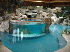 Amazing Indoor Fish Pond To Upgrade Your House 03