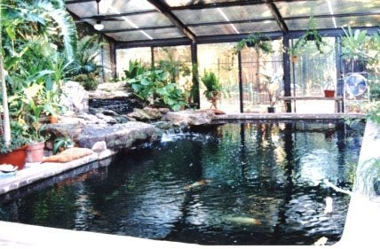 Amazing Indoor Fish Pond To Upgrade Your House 09