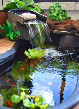 Amazing Indoor Fish Pond To Upgrade Your House 30