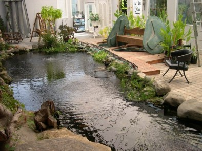 Amazing Indoor Fish Pond To Upgrade Your House 41
