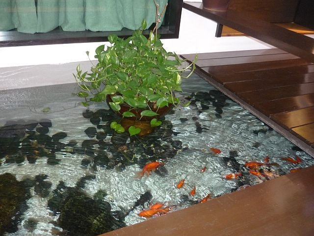 Amazing Indoor Fish Pond To Upgrade Your House 48