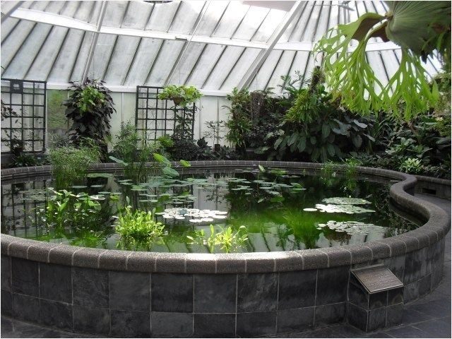 Amazing Indoor Fish Pond To Upgrade Your House 50