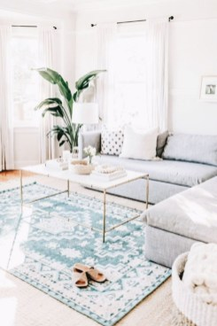 Best Rug To Decor Your First Living Room 28
