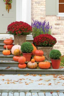 Perfect Pumpkin Ideas To Decorate Your Porch 38