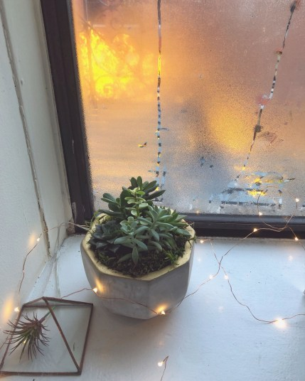 Ways To Use Christmas Light In Your Room 22