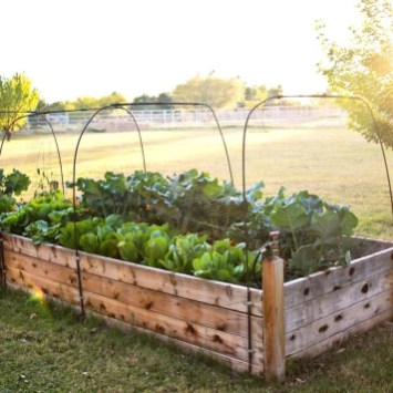 Coolest DIY Garden Bed Planner 33