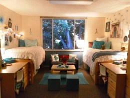 Awesome Dorm Room Decoration With Double Bed 12