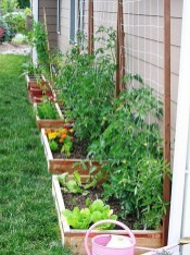 Inspiring Vegetable Garden Design For Your Backyard 06