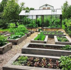 Inspiring Vegetable Garden Design For Your Backyard 07