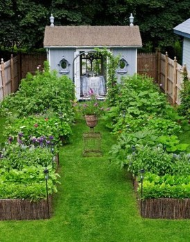Inspiring Vegetable Garden Design For Your Backyard 11