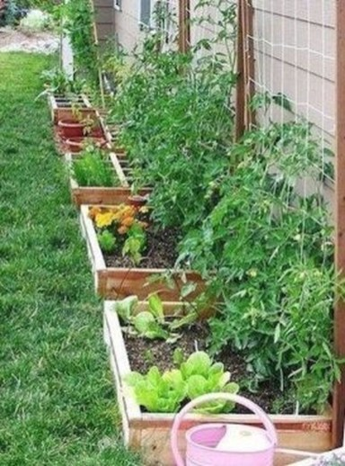 Inspiring Vegetable Garden Design For Your Backyard 34