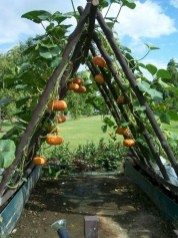 Inspiring Vegetable Garden Design For Your Backyard 39