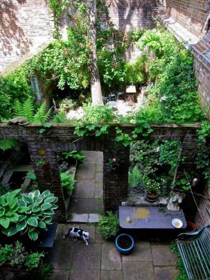 Small Courtyard Design With Some House Plants 07