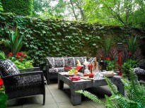 Small Courtyard Design With Some House Plants 08