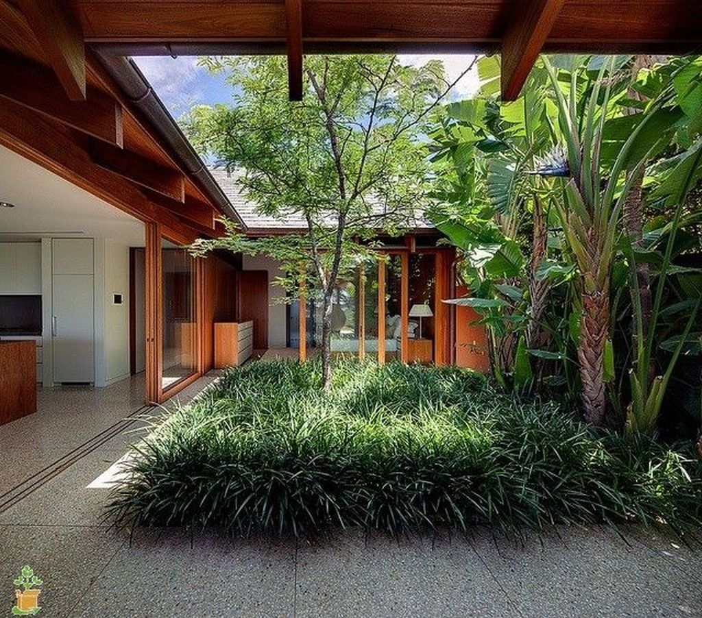 Small Courtyard Design With Some House Plants 40