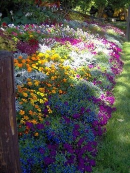 Beautiful Flower Garden Idea You Can Try 05