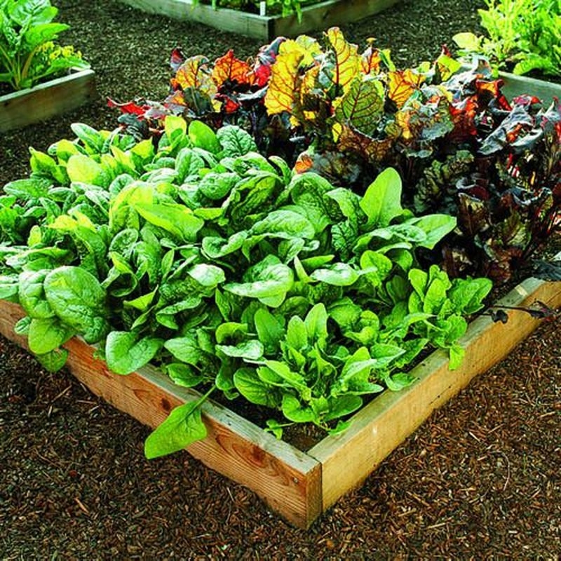 Lovely Fall Garden Idea With Perfect Ornaments 02