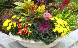 Lovely Fall Garden Idea With Perfect Ornaments 08