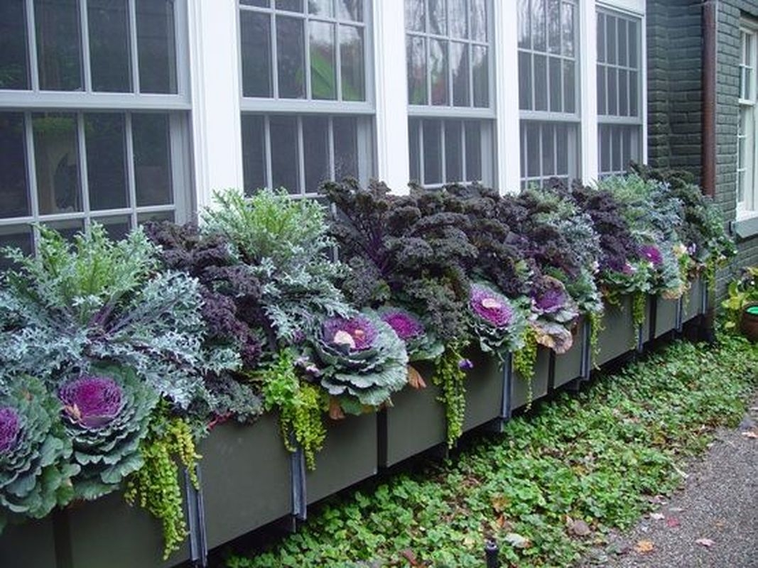 Lovely Fall Garden Idea With Perfect Ornaments 18