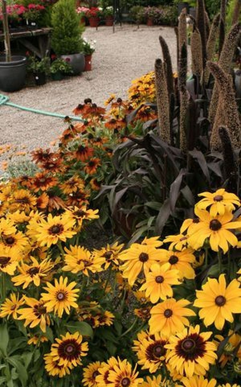 Lovely Fall Garden Idea With Perfect Ornaments 22