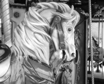 A handsome carousel horse in Barefoot Landings