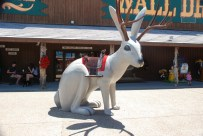 A human-sized jackalope for photos. Wall Drug is a major tourist destination.