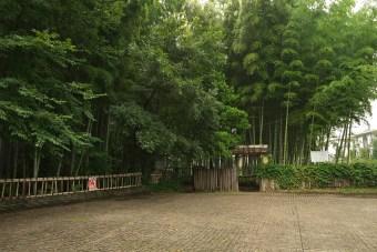 竹林公園入口