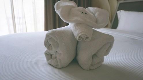 Hello, elephant.