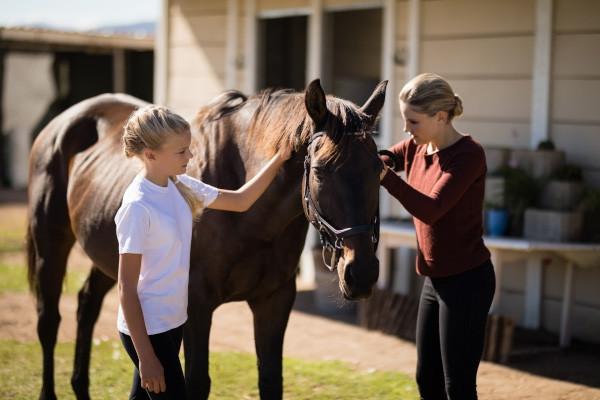 Rennicke Equestrian Therapy