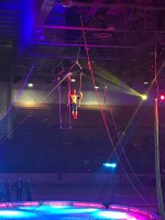 Review: Kerak Shrine Circus